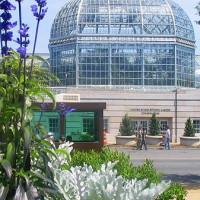 De US Botanic Garden
