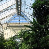 Kas van de US Botanic Garden
