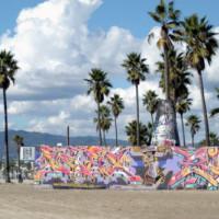 Palmbomen aan Venice Beach