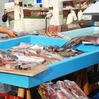 Op de Vismarkt van Marseille