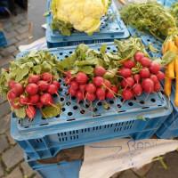 Radijzen van een groentenboer