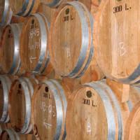 Vaten in Barros Porto Wijnkelder