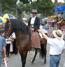 Fiestas de los Patrones de la ciudad de Málaga