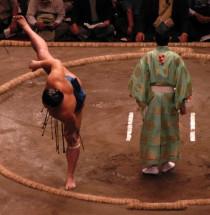 Sumo-toernooien