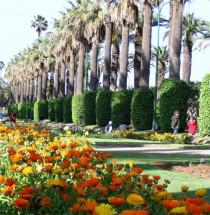 Park van de Arabische Liga