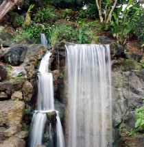 Arboretum van Los Angeles