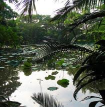 Koninklijk Rama IX-park
