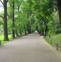 Plantypark