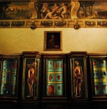 Museo delle Cere Anatomiche