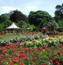 Sir Thomas and Lady Dixon Park