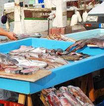 Vismarkt van Marseille