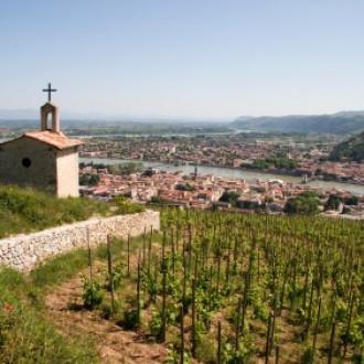 Rhônevallei